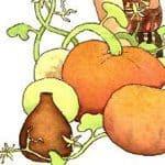 The Pumpkin in a Jar Story