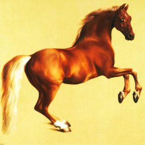 The Magic Horse Story